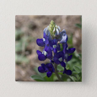 Texas Bluebonnets Photograph Series #9 Pinback Button