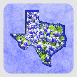 TEXAS BLUEBONNETS SQUARE STICKER