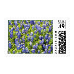 Texas Bluebonnets Stamp