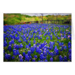 Texas Bluebonnets Stationery Note Card