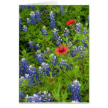 Texas Bluebonnets with Indian Blankets Stationery Note Card