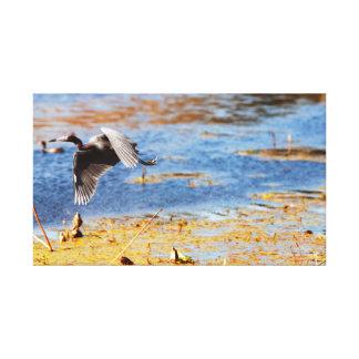 Texas Brazos Bend Gray Heron Bird Nature Canvas Print