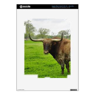 Texas Burnt Orange Longhorn Steer iPad 3 Skin