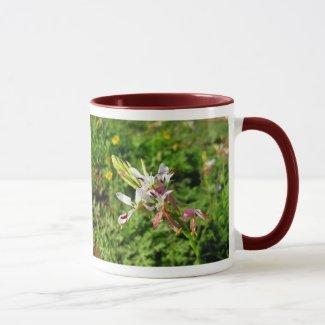 Texas Butterfly Gaura (Oenothera lindheimeri) Mug
