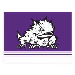 Texas Christian University Frog | Stripes Postcard
