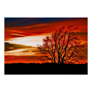 Texas Christmas Eve Sunset Posters