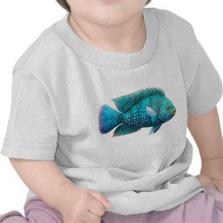Texas Cichlid Fish Infant T-Shirt