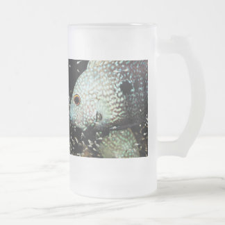 Texas cichlid frosted glass beer mug