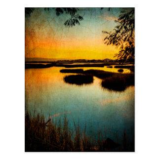 Texas City Wetlands Postcard