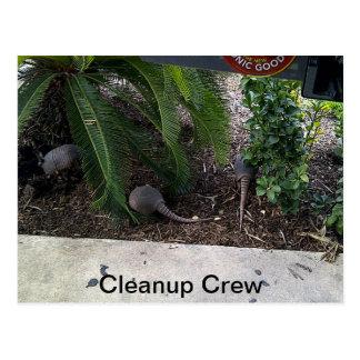 Texas cleanup crew postcard
