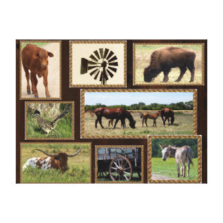 Texas Country Collage Canvas Print