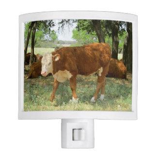 Texas Cow-Nature Scene Night Light
