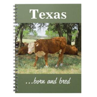 Texas Cow Notebooks