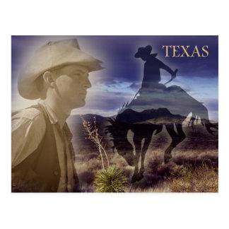 Texas Cowboy Postcard