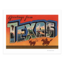 Texas (Cowboy Roping Bull)Large Letter Scenes Postcard