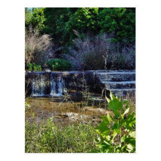 Texas Creek Spillway Postcard