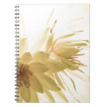 Texas Dawn Water Lilies in Sepia Note Book