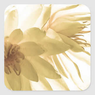Texas Dawn Water Lilies in Sepia Sticker