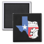 Texas: Flag and Silhouette of Texas 2 Inch Square Magnet