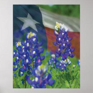 Texas flag bluebonnets poster
