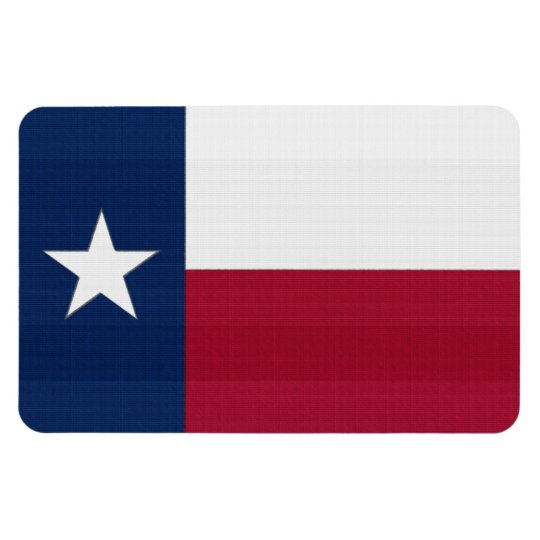 Texas Flag in Brick Magnet