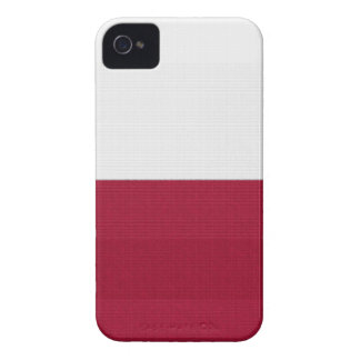 Texas Flag lone star state red white blue colors iPhone 4 Case-Mate Case