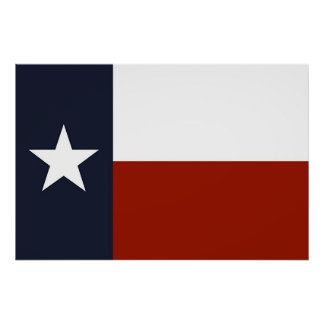 Texas Flag Poster
