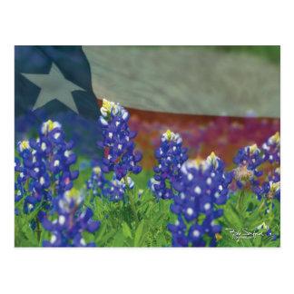 Texas flag with bluebonnets postcard