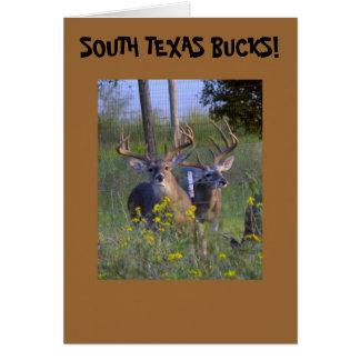 Texas Greeting Cards! Greeting Card