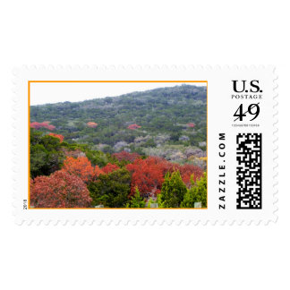 Texas Hill Country Postage Stamp