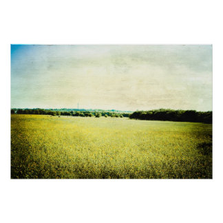 texas hill country poster