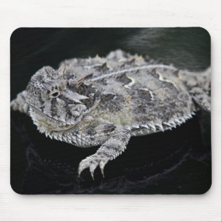 Texas Horned Lizard - Texas State Reptile Mouse Pad