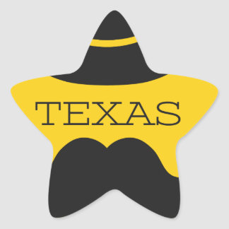 Texas in yellow star sticker