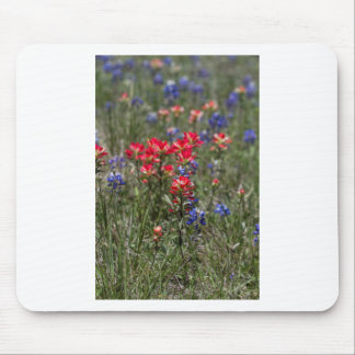 Texas Indian Paintbrush and Bluebonnet Wildflowers Mousepad