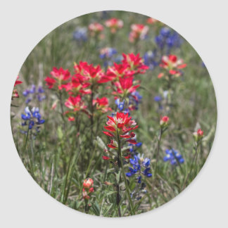 Texas Indian Paintbrush and Bluebonnet Wildflowers Stickers