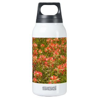 Texas Indian Paintbrush Wildflowers SIGG Thermo 0.3L Insulated Bottle