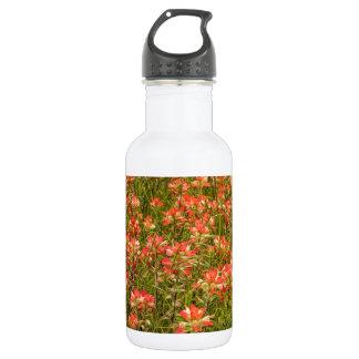 Texas Indian Paintbrush Wildflowers Stainless Steel Water Bottle
