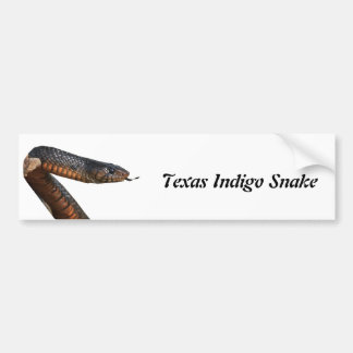 Texas Indigo Snake Bumper Sticker