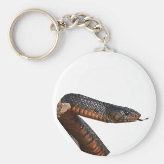 Texas Indigo Snake Key Chain