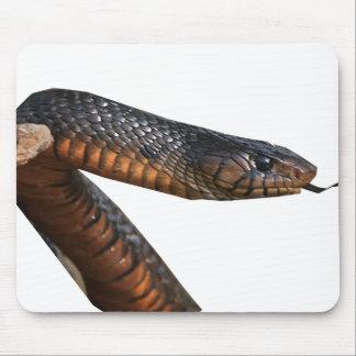 Texas Indigo Snake Mouse Pad