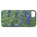Texas, Lake Buchanan. Texas Bluebonnet and Wild iPhone 5 Case