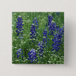 Texas, Lake Buchanan. Texas Bluebonnet and Wild Pinback Button