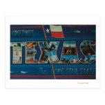 Texas (Lone-Star Flag)Large Letter Scenes Postcards