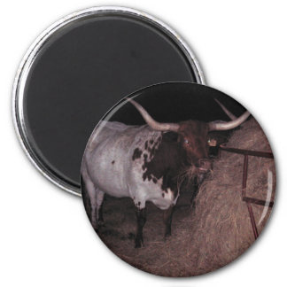 Texas Longhorn 2 at Cowcatchers 2 Inch Round Magnet