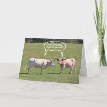 Texas Longhorn Birthday Wishes Card