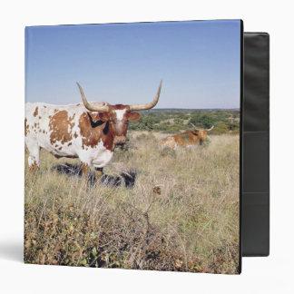 Texas Longhorn Breed (photo) 3 Ring Binder
