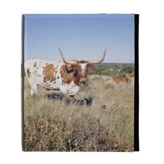 Texas Longhorn Breed (photo) iPad Cases