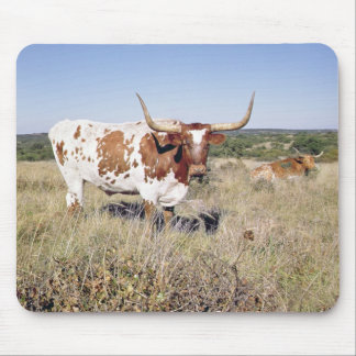Texas Longhorn Breed (photo) Mouse Pad