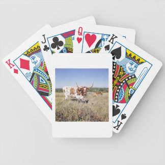 Texas Longhorn Breed (photo) Card Decks