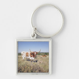 Texas Longhorn Breed (photo) Silver-Colored Square Keychain